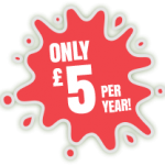 Only £5 per year